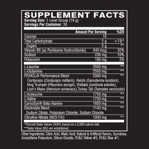 Aminocore Supplement Facts Label
